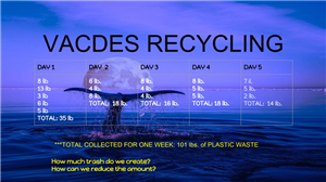recycling data collected