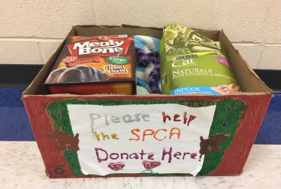 box of donations for the SPCA