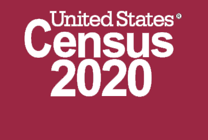 Census 2020 background
